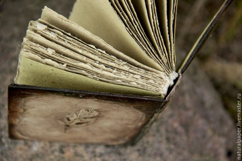 Путь книжного червя: советы,…