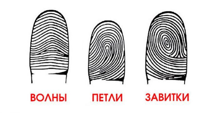 Обрати внимание на свои пальцы! А вдруг ты гений?