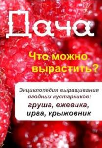 Дача. Что можно вырастить? Энциклопедия выращивания ягодных кустарников: груша, ежевика, ирга, крыжовник