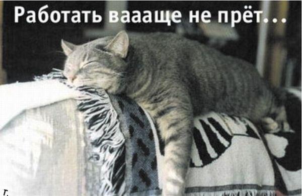 Понедельник - день тяжелый? ))