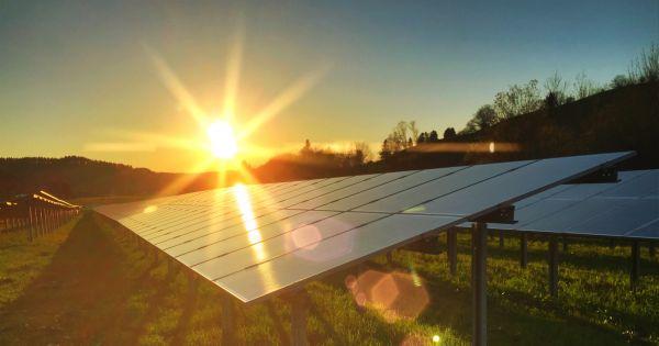 Солнечная энергетика поднимает урожайность на 60 процентов