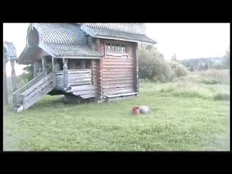А.Маклаков  - Сломанная ветка
