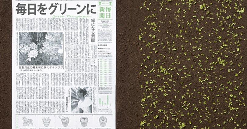 Япония представила миру удивительную газету. Вот что получится, если закопать ее в саду