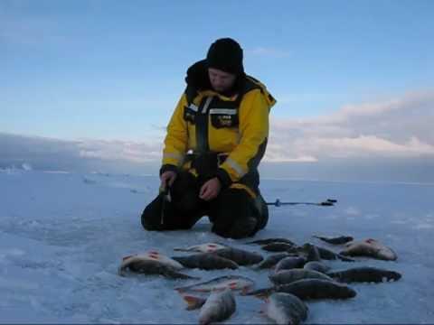 рыбалка на мотовском