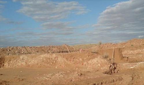 Суслик помог археологам найти клад с монетами под Астраханью