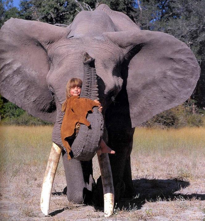 Типпи Дегре и дикие животные Африки.
