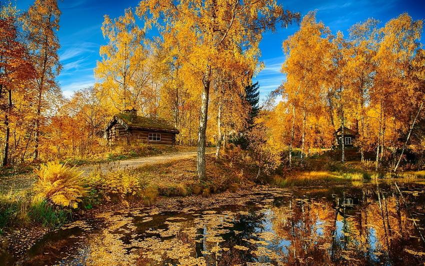 Картинки по запросу швейцария осень