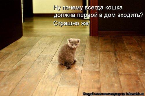 http://mtdata.ru/u29/photoBF30/20123192009-0/original.jpg