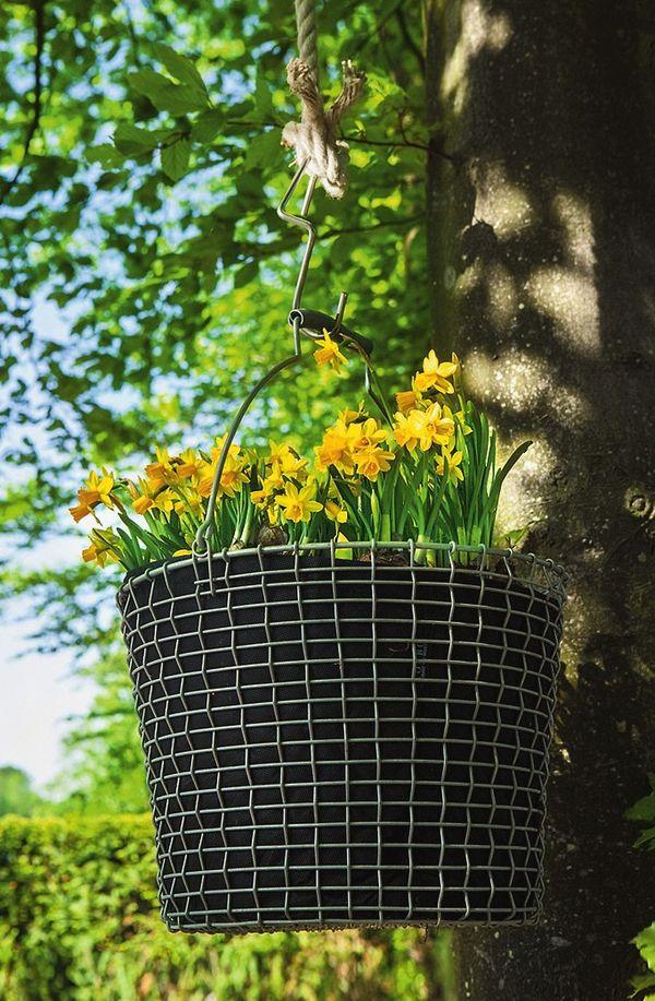 Можно подвесить заполненную растениями корзину из проволоки на ветке дерева