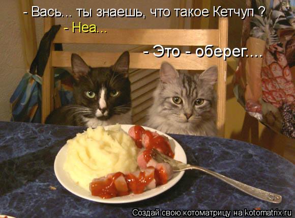 kotomatritsa_C (580x428, 224Kb)