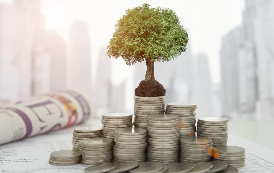 15 самых прибыльных инвестиций в истории