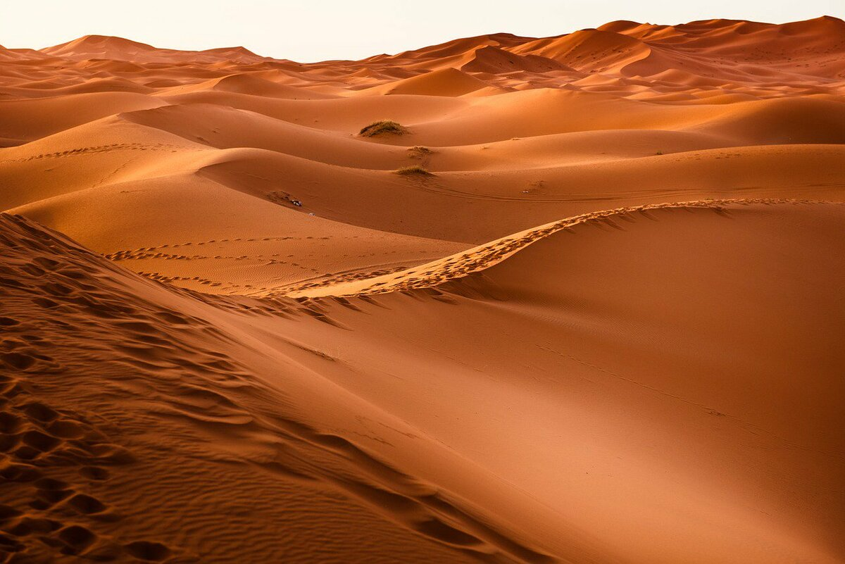 Как глубоки пески Сахары