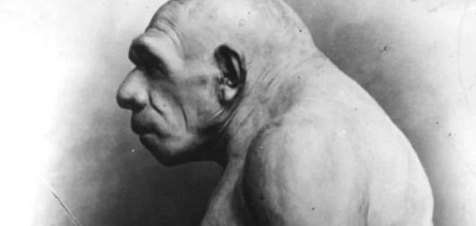 Как человек выжил в ледниковый период