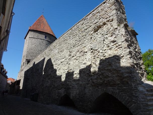 3. Лето-2012: ВОЗВРАЩЕНИЕ НА ЗЕМЛЮ ПРЕДКОВ. Эстония