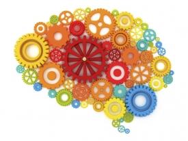 Как сохранить мозг активным и здоровым