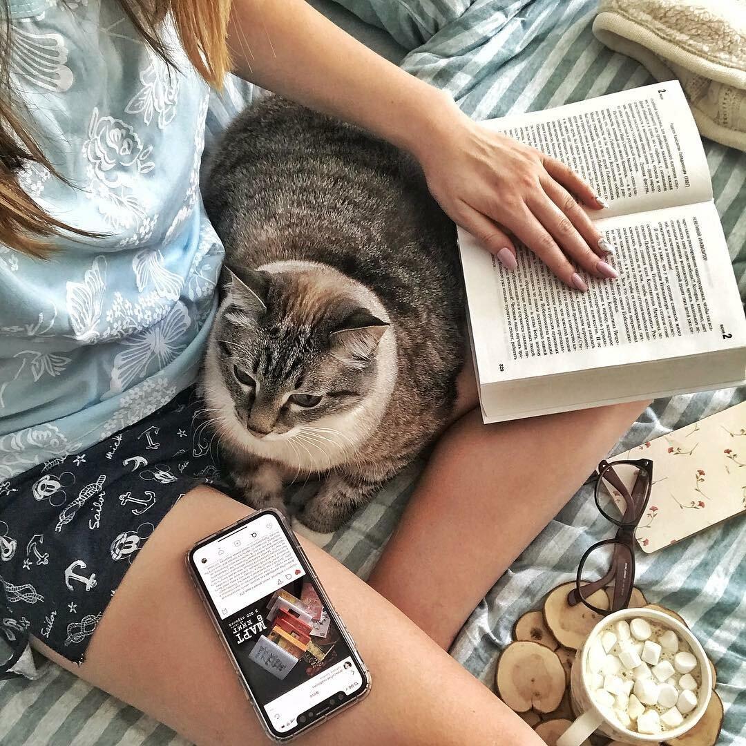 Счастливые люди гладят с утра кошек, пьют кофе и читают книги