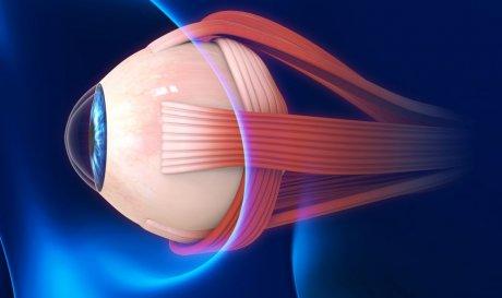 Новый имплант с лекарством вылечит глаукому изнутри глаза