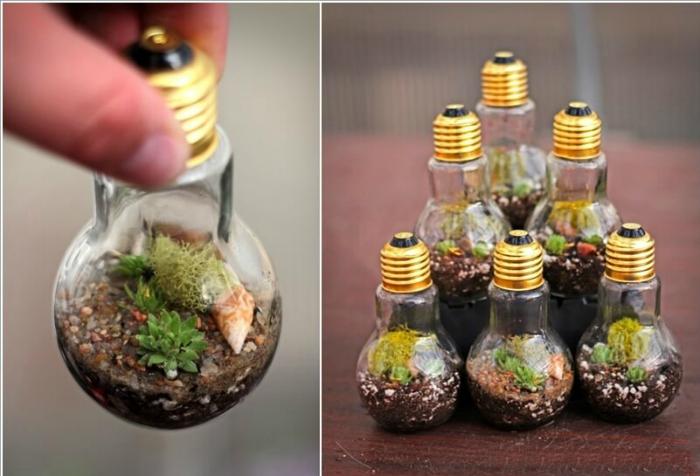 Миниатюрный сад в стеклянной лампочке.