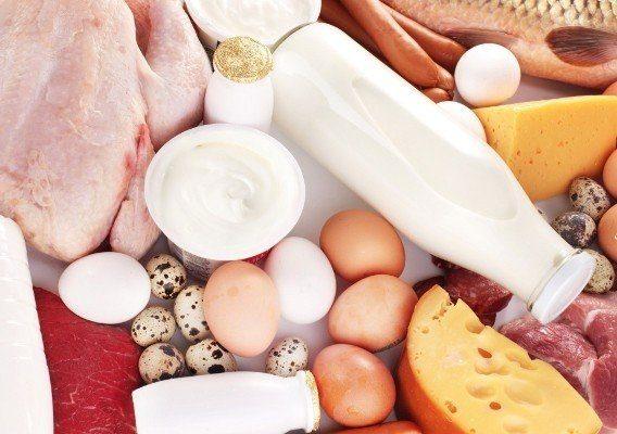 10 продуктов с самым высоким содержанием белка