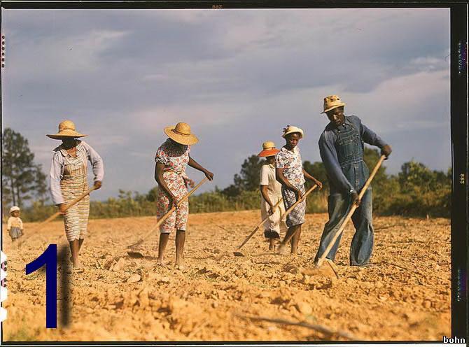 Американские крестьяне