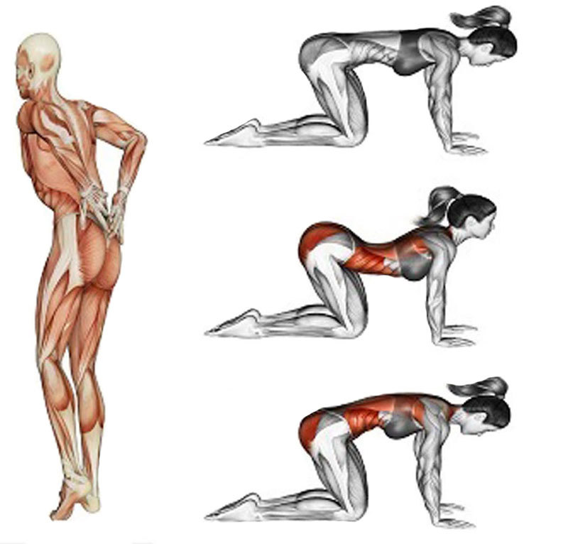 Упражнения на растяжку, которые быстро избавят от боли в спине.