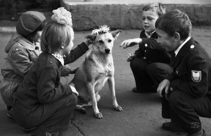 """4) Сегодня детям говорят: """"Ты слишком маленький, чтобы ухаживать за животным! Возьмем питомца, когда ты подрастешь"""" воспитание, дети, интересно, родители, фото, чему учат детей сегодня"""