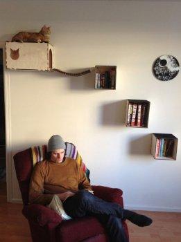 МАСТЕРИЛКА. Необычный домик для кошки