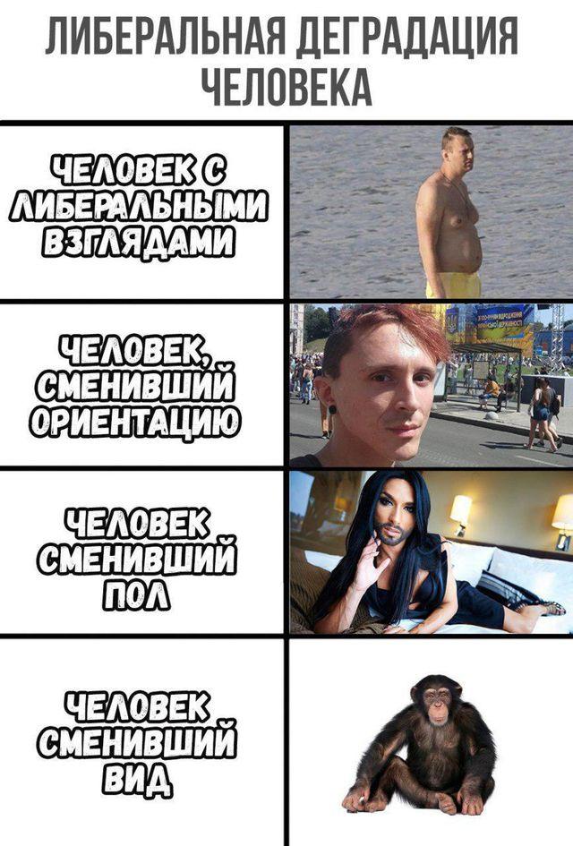 Александр Роджерс: О деграда…