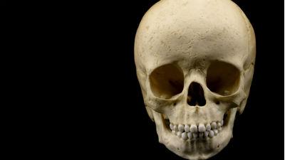 В районе Парка Горького нашли скелет ребенка