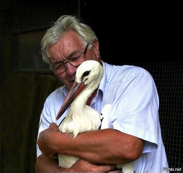 Местный житель Степан Вокич спас птицу от браконьеров — охотники повредили ей...