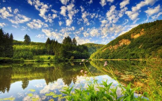 отражение в воде природа 1 (550x343, 227Kb)