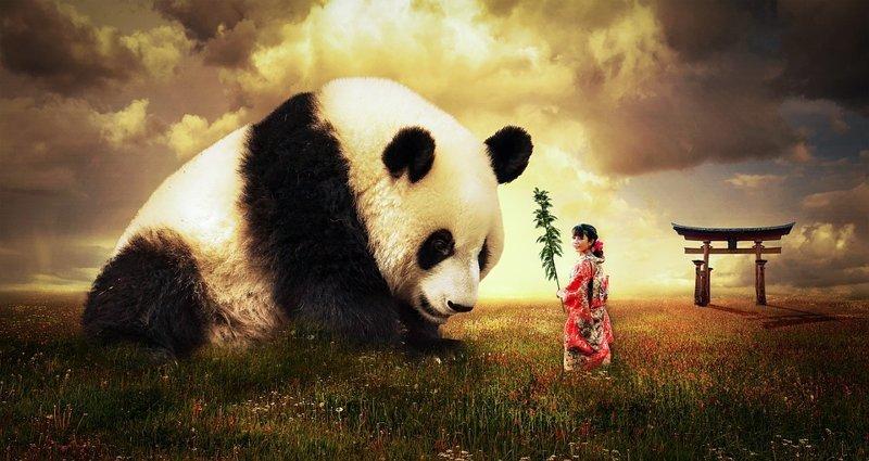 Интересные факты о Китае (12 фото)