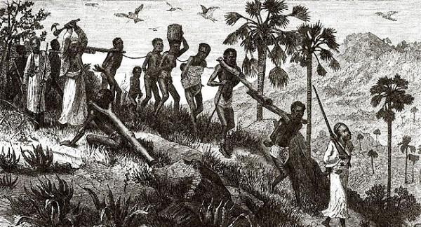 Как негров везли в рабство (I)