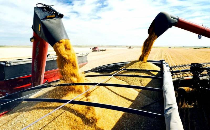 Стоит ли делать из Сирии крупнейший хаб российского зерна?