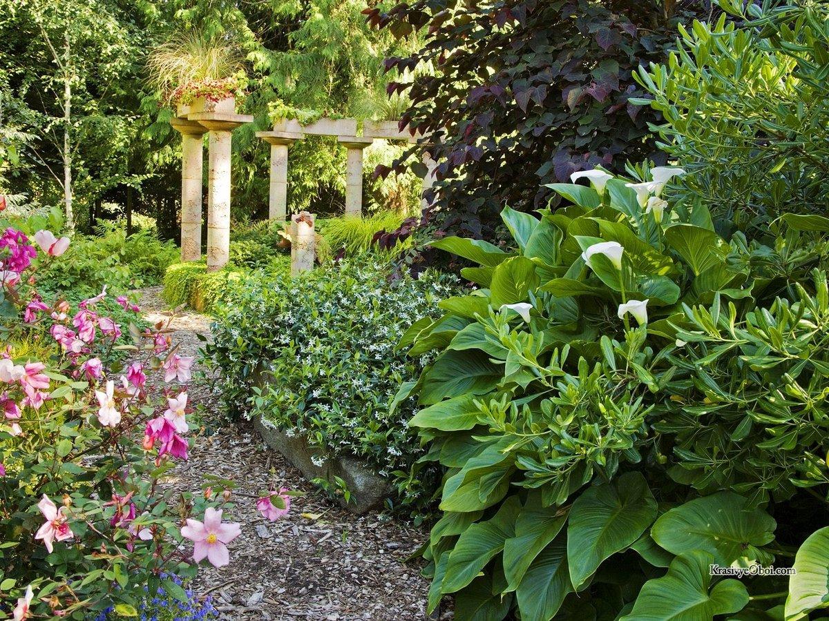 Уникальние идеи для оформления сада