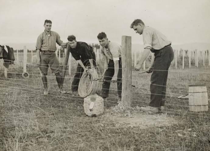 Взрывающиеся штаны  фермеров Новой Зеландии .1931 год