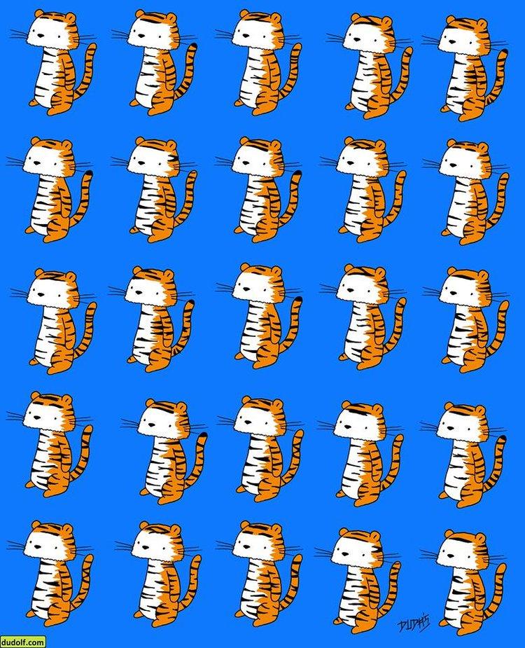 У одного из этих тигров нет …