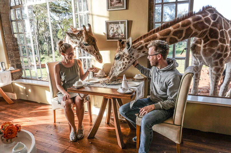 Завтрак с жирафами (www.thebackpackway.com)