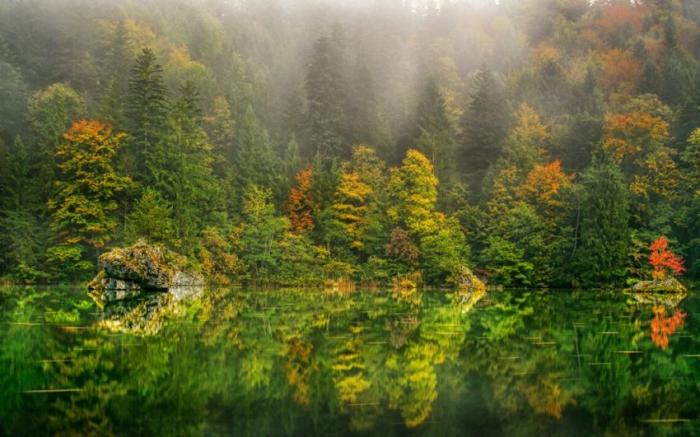 отражение в воде природа 22 (700x437, 348Kb)
