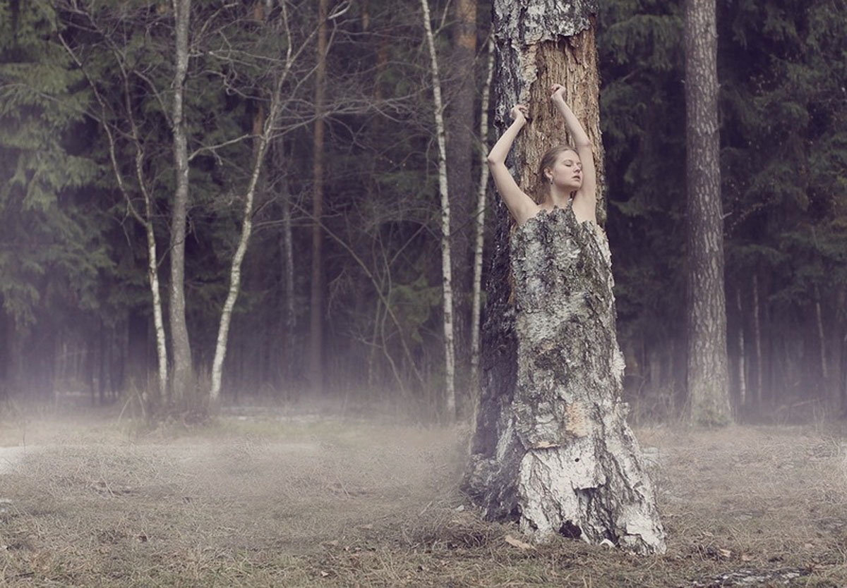 Привязал к дереву фото 22 фотография