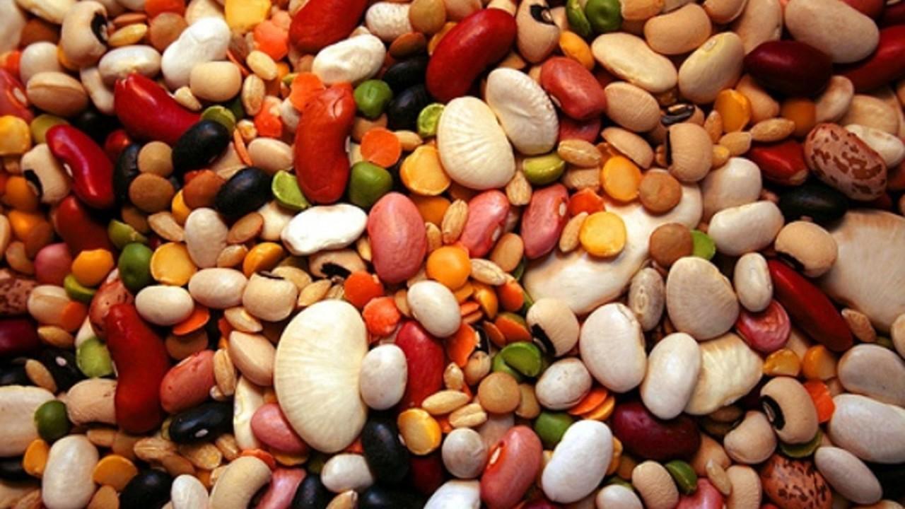 Чем опасны бобы и чечевица и как их правильно готовить