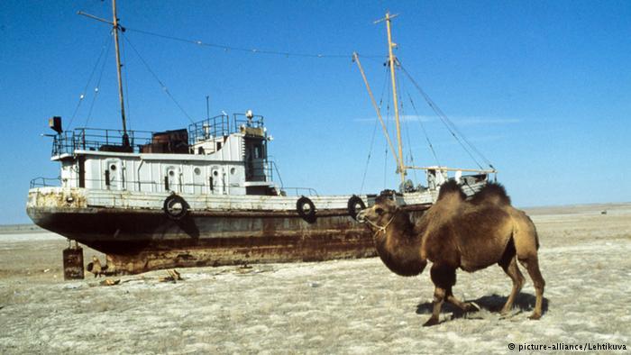 Узбекистан просит международ…