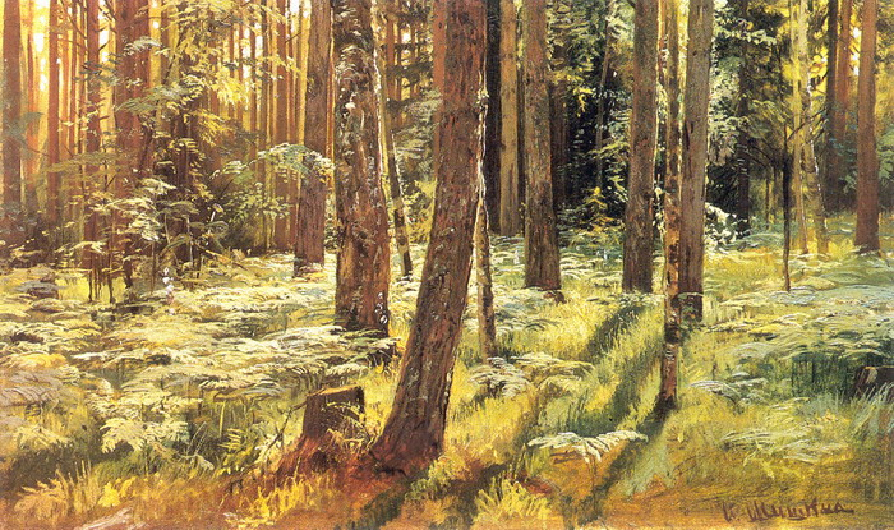Шедевры живописи на все времена — пейзажи великого Ивана Шишкина