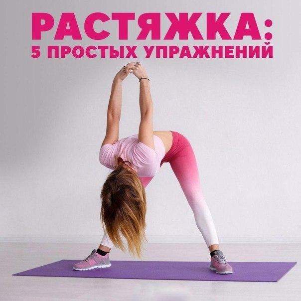 Растяжка: базовые упражнения