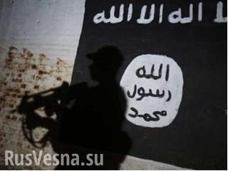 Невидимый «халифат»: о новой угрозе в Сирии