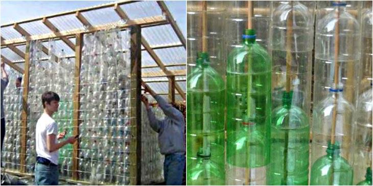 Фото теплицы из пластиковых бутылок