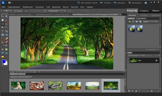 Adobe photoshop elements 100 multilanguage with camera raw