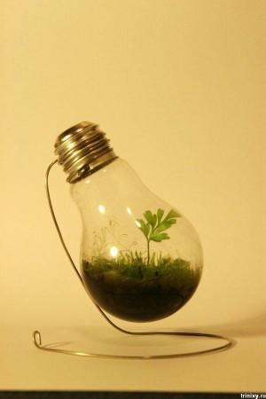Перегоревшая лампочка. Вторая жизнь. Что можно сделать? Идеи.