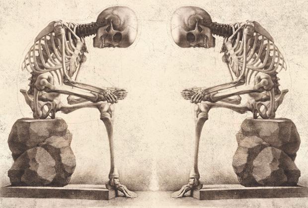 Что происходит с телом, если вы сидите по 12 часов в день