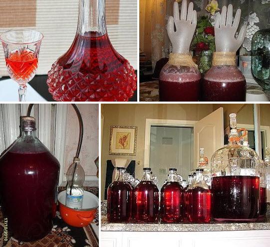 Домашнее вино из старого варенья рецепт